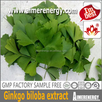 ginkgo biloba leaf extract Natural herbal medicine Flavone glycoside 24% Terpene Lactones 6%