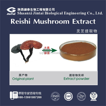 China supplier Reishi Mushroom Extract Ganoderan and Triterpenoid saponins