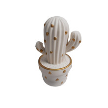 White ceramic home decoration ornaments indoor cactus plants