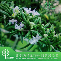 100% Natural Water Soluble Rosemary Extract/Rosmarinic acid 5%