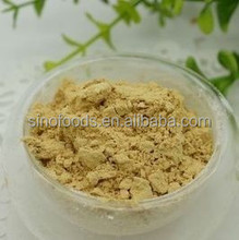 2015 chinese ginger powder 100mesh ginger