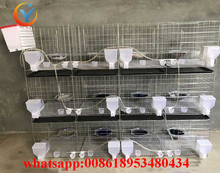 Pigeon Cage Trap For Pigeon Racing Used For Poultry Farm cage for sale