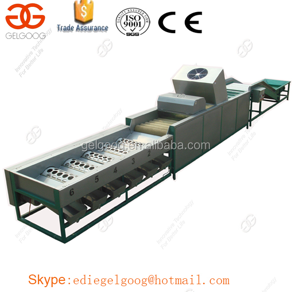 Factory Price Apple Washing and Waxing Machine