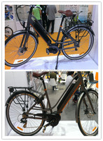 beautiful electric bicycle amphibious vehicle with VELO saddle for sale