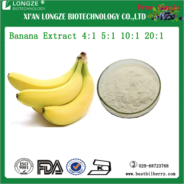 Freeze Dried/Spray Dried Banana/Musa nana Lour. Fruit Extract Powder 5:1 10:1 20:1 distributor with free sample