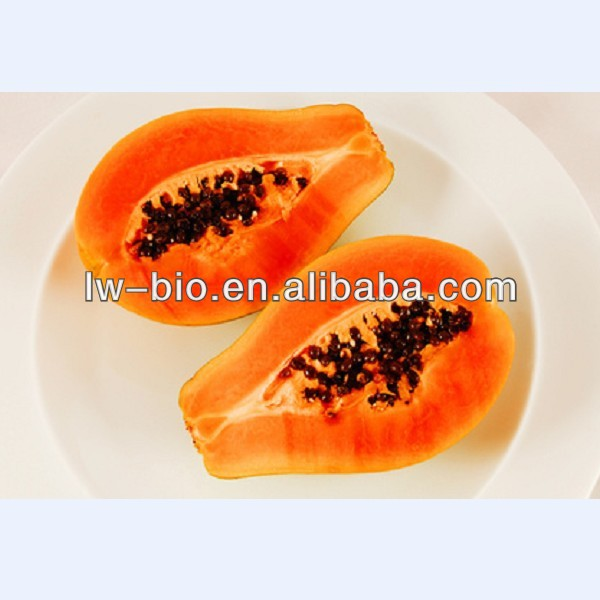 Pure natural Papain, Papaya extract, enzyme products