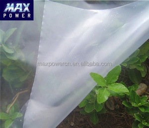 watermelon greenhouse film covering materials