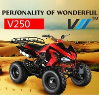 Cool sports ATV China 250cc atv engine strong with CE ceritifcate hot on sale