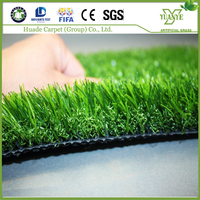 Beijing Landscaping natural garden carpet grass wholesale cheap price