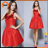 Ladies dress simple lace design women dresses