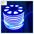 High quality DC24V AC110V 220V 4.8W LED Neon Flex,Flex LED neon light