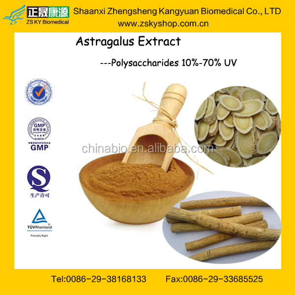 GMP Factory Supply Top Quality Astragalus Root Extract