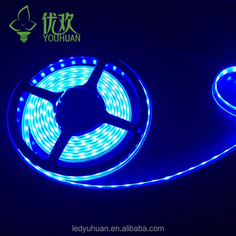 Epoxy plate swimming pool led strip lighting 12 volt led light strips with SMD2835 chips