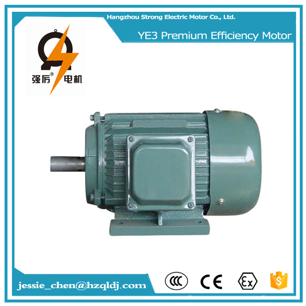 220 volt 10 hp 3 phase ac squirrel cage induction generator motor manufacturer
