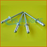 Low price wholesale ss316 close type blind rivets