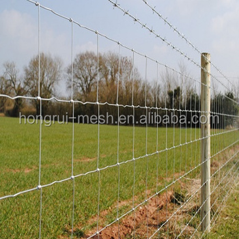 Supply from professional manufacturer functional high tensile galvanized field fence