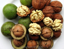 wet walnuts for sale