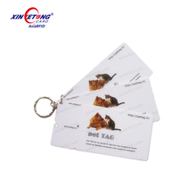 Punched Plastic Combo Card Key Tag Pet Tag with Metal Key Chain for Membership, VIP, Loyalty, Gift Cards, China Manufacturer