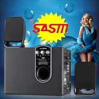 BR103 hot selling multimedia speakers with FMbluetooth.wireless microphone.USB