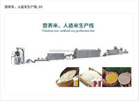 Nutrition rice/ Artificial rice extruder machine
