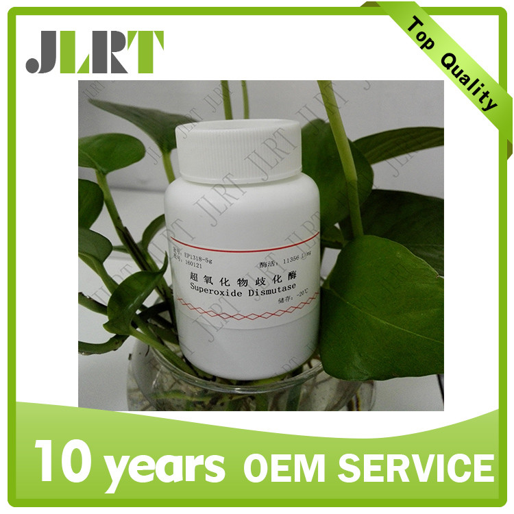 Wholesale highest activity medical food grade 99% protein SOD enzyme SOD capsule for sale