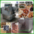 Automatic coffee roaster/peanuts nuts and chestnut roasting machine/commercial small nut roasting machine