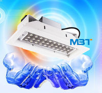 30W Petrol Station LED Light supplier Gas Station Canopy Lights