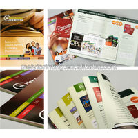 2013 Full Color Brochure Printing/ Flyer Printing/ Leaflet Printing