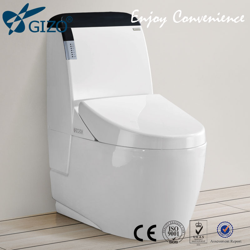 New Design FM Radio Colored Toilet toilet brush with handle