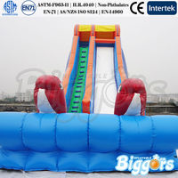 Inflatable Dolphin Water Slide Large Inflatable Water Slide