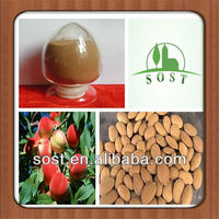 Natural Peach Seeds Extract Powder