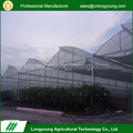 New products sawtooth plastic galvanized garden green house