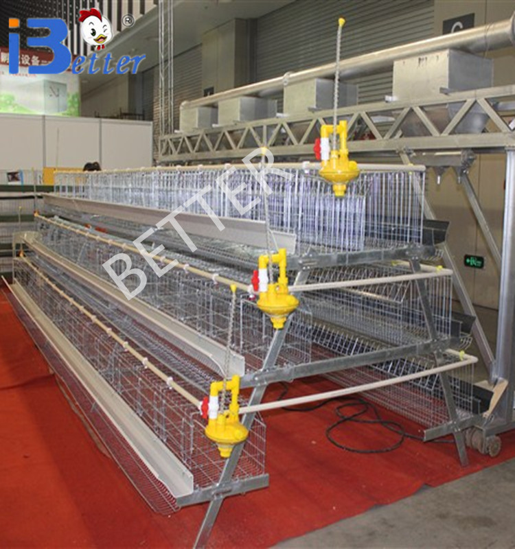 New Design BT factory A-96 laying hens cage(Welcome to Visit my factory)