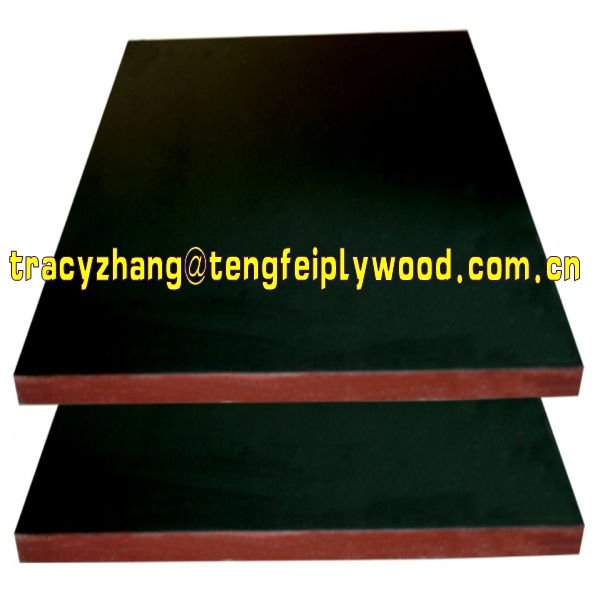 tego film faced plywood