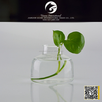 High Quality Wholesale cheap glass vase