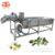Factory Price Bubble Type Tomato Mango Cleaning Spinach Cleaner Blueberry Strawberry Washer Fruit Vegetable Washing Machine