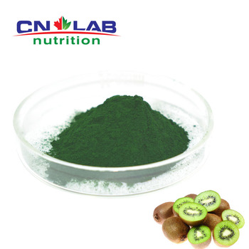 Wholesale Price Fresh Kiwi Powder,Kiwi Fruit Extract,Kiwi Fruit Extract Powder 5% Flavone
