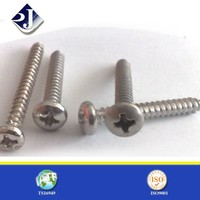 Phillips recessed self tapping screw