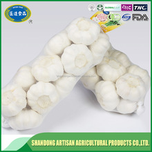 China made best selling china natural garlic with best quality and service