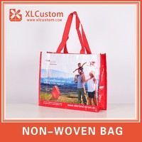 New arrival high quality PP full color lamination non woven bag for shopping