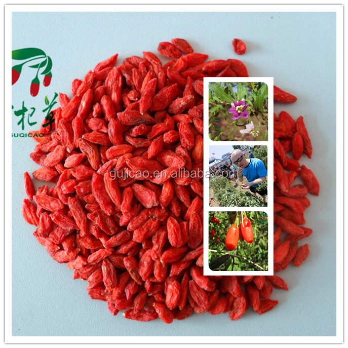 Free sample in bulk 100% natural goji berry dried goji berries