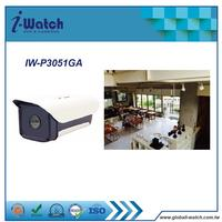 IW-P3051GA ip video outdoor ip cam webcam ip camera
