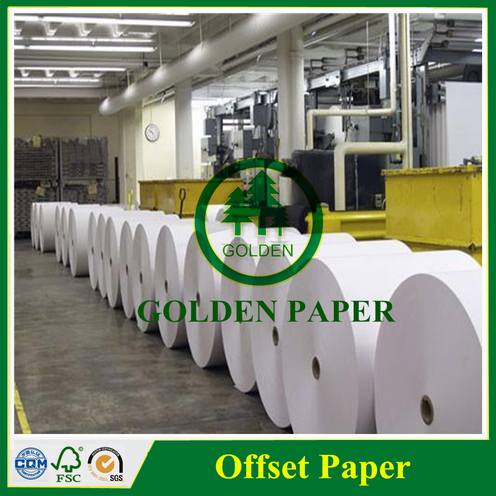 50-350gsm Offset paper, woodfree offset paper, offset printing paper