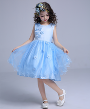Showlands Boutique Girl Clothing Floral Appliqued Children Party Wear Dresses For Girls of 2-6 Years
