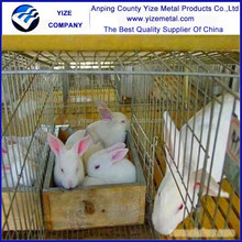 Galvanized Iron Wire Material Make rabbit cage