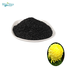 manufacturer seaweed extract fertilizer ascophyllum nodosum for soil
