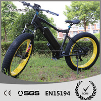 2016 STEAMOON 1000W/1500W MOTOR -- TT new style two wheel stand up electric bike