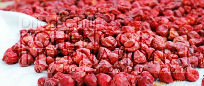 Hot Deal on Hot Dried Chili, A Grade Stock available on Cheap price!