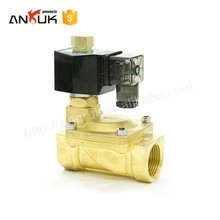 AC Brass Electric Water Control Solenoid Valve