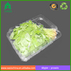 Clear plastic food/fruit/vegetable packaging tray